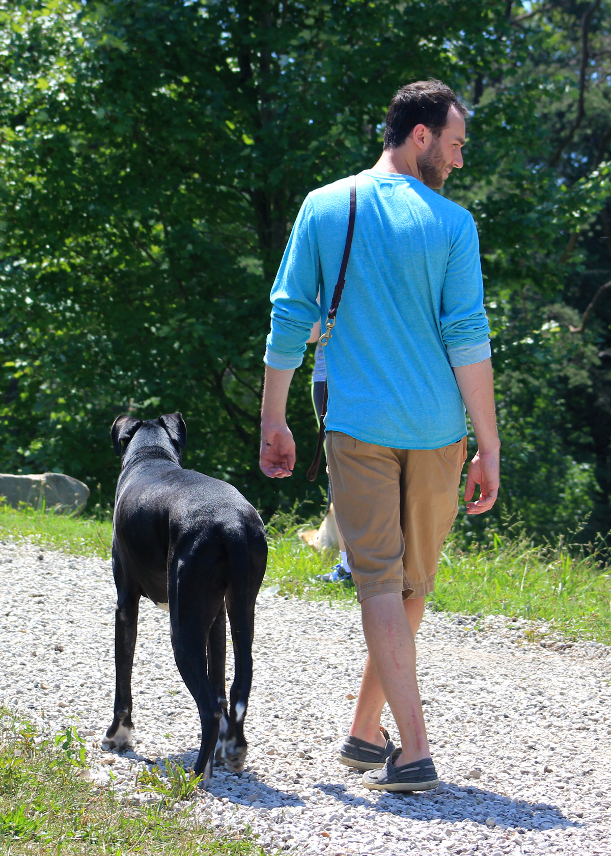 Enjoying the freedom and trust of off-leash control