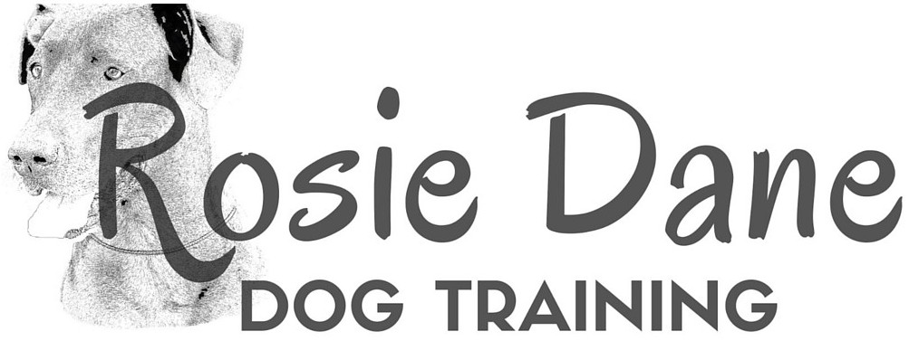 Rosie Dane Dog Training